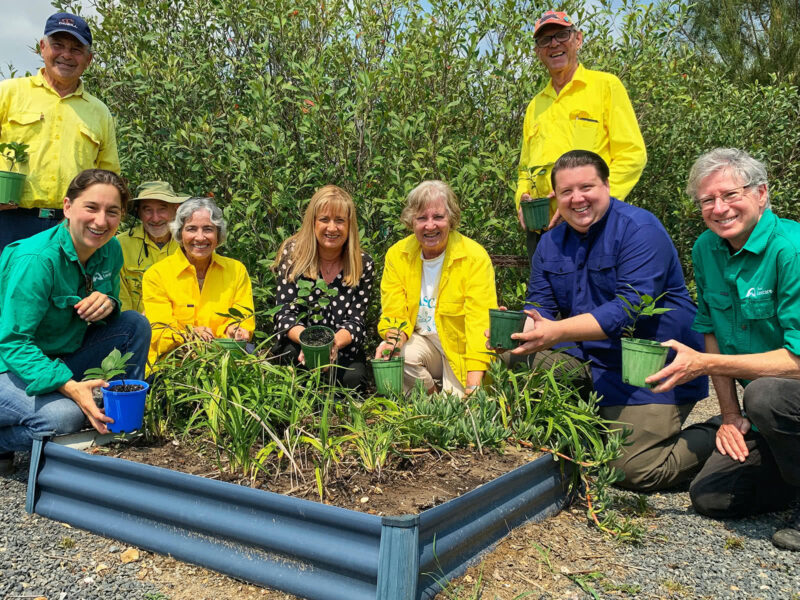 Kingscliff Community Dunecare Volunteers With Justine Elliot Mp, Reece Byrnes Andtweed Landcare Representatives