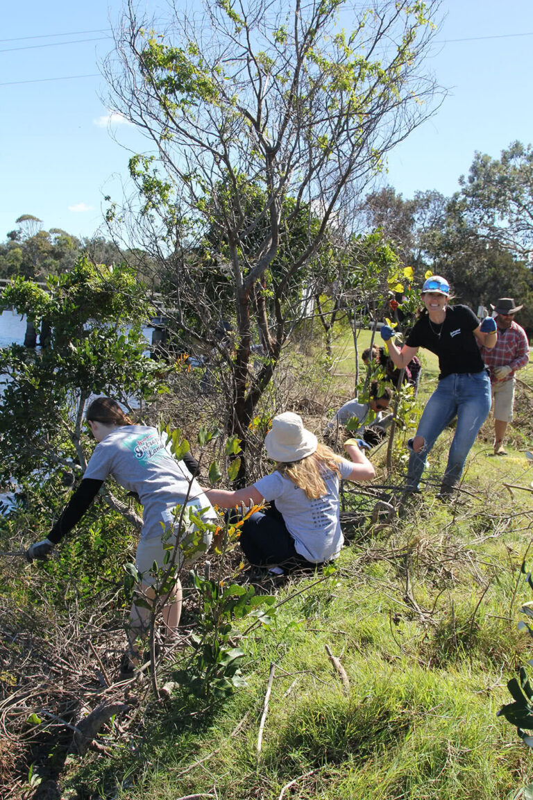 Northern Rivers Intrepid Landcare Group Weeding